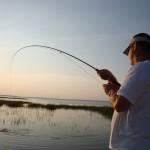 Fishing With Capt Scott on the Georgia Coast
